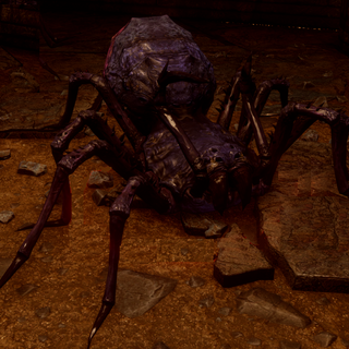Corrupted spider in <i>Dragon Age: Inquisition</i>