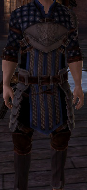 File:Warden Scout's Tunic.png