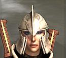 Raider Helm