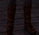 Warden Scout's Boots