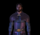 Grey Warden Robes