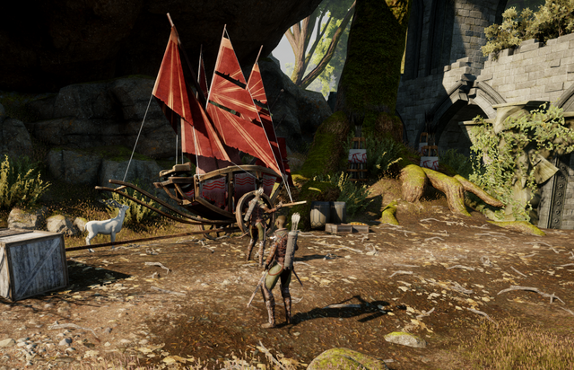 File:A Dalish Perspective Quest Image.png