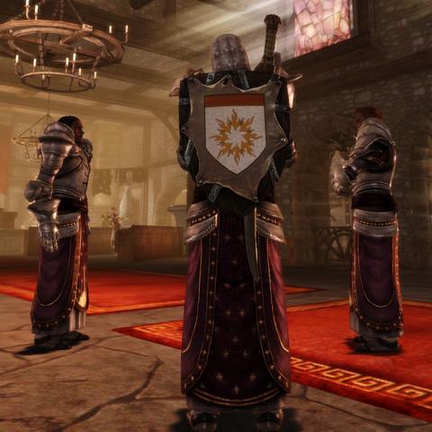 Templar heraldry on a <a href=