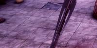 Acolyte's Staff (Origins)