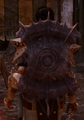 Darkspawn Shield Cassandra.png