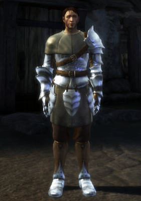 File:Heavy Chainmail armor set.png