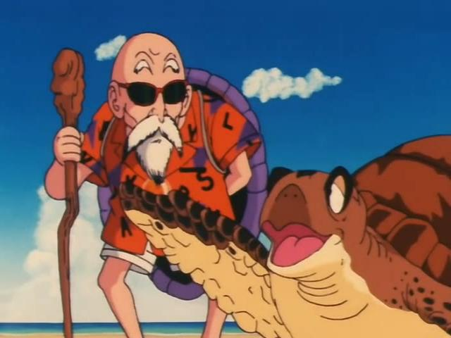 File:Turtle pointing at goku.jpg