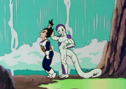 VegetaPummeled
