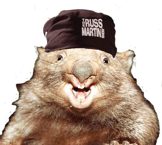 File:Ani wombat russ.png