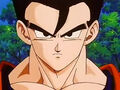 Dbz249(for dbzf.ten.lt) 20120505-12032698