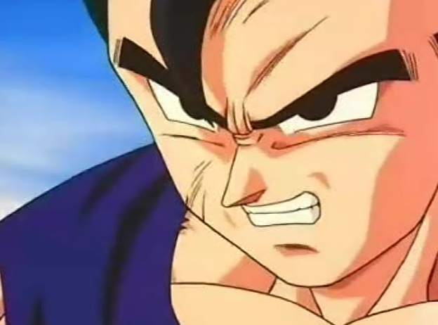 File:Gohan very agitated during the fight.PNG