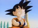 Goku54