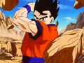 Dbz249(for dbzf.ten.lt) 20120505-11563599