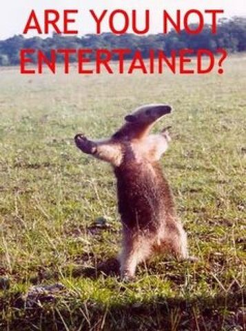 File:Anteater are-you-not-entertained-e1313173375543.jpg