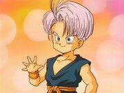 Trunks photo