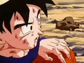 DBZ - 224 -(by dbzf.ten.lt) 20120303-15201406