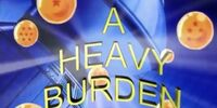A Heavy Burden