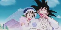 Wedding Dress Saga
