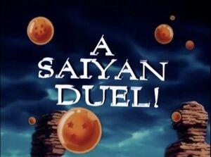 Saiyan duel