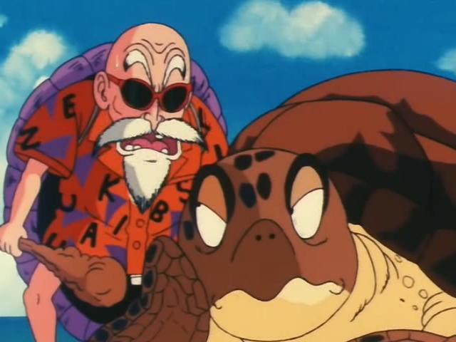 File:Roshi and Sea Turtle.jpg