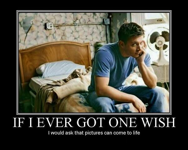 File:If I Ever Got One Wish.jpg