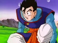 Dbz241(for dbzf.ten.lt) 20120403-17152311