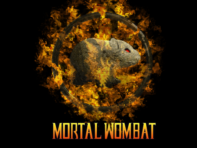 File:Mortal Wombat by The Camo.png