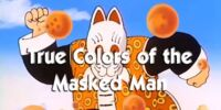 The True Colors of the Masked Man