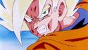 GokuS15