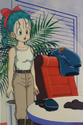 Bulma in the emperors quest