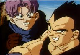 File:Vegeta and Trunks.jpg