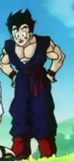 File:Gohan explaining how to bring out the ki to videl.png