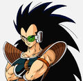 Raditz (BoG website art)