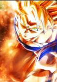 Gokuselfdestruction