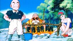 300px-Krillin, Bulma, and Roshi Camping (Tree Of Might)