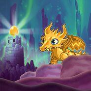 Gold Dragon-Hatch