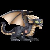 Cat Dragon 3
