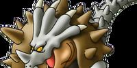 Tortoceratops
