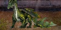 Green Hermit