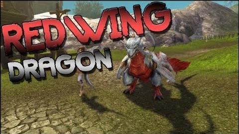 Dragon's Prophet Redwing Dragon