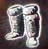 Legs furgreaves icon