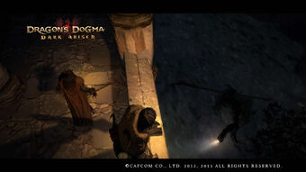Dragon's Dogma Dark Arisen Screenshot 7-0