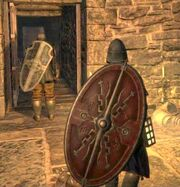 Mystik knight guard 1-001