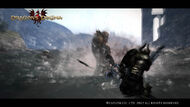 Dragon's Dogma Screenshot 1