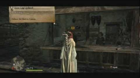 (7 ~ 1) Dragon's Dogma ~ Idol Worship Hero Trophy Guide