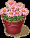 Gardenia'sFavoriteBlossoms