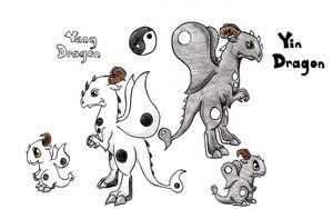 Yin-Yang Dragon2