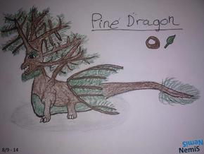 PineDragon NemiS