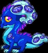SapphireDragonAdult.png