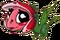 TulipDragonBaby